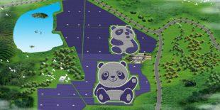 Panda şeklindeki GES'te üretim başladı
