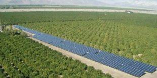 Yeşil Enerjili Topraksız Seralara 1,8 Milyon Liralık Hibe